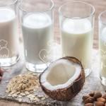 Bebidas vegetales – leche vegetal