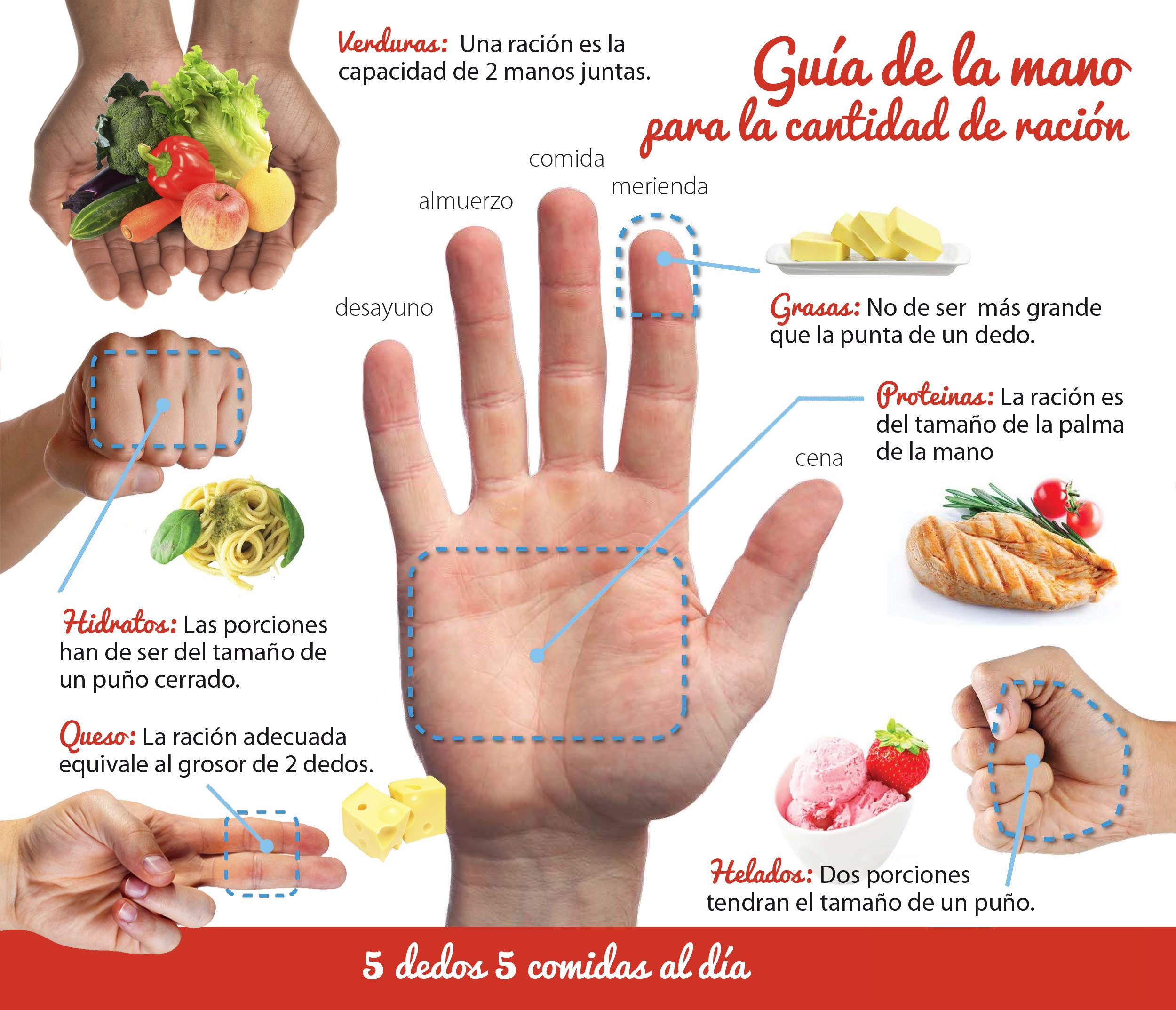 guia de la mano para la cantidad de racion que comemos